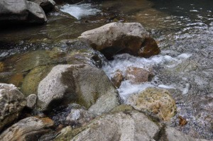creek-1000